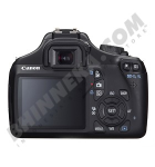Canon 8